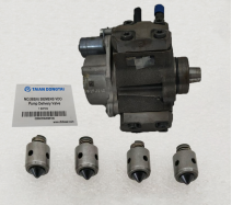 NO,592(6) SIEMENS VDO Pump Delivery Valve